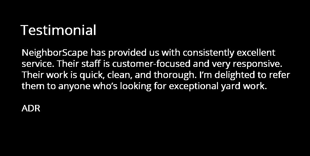 excellence testimonial