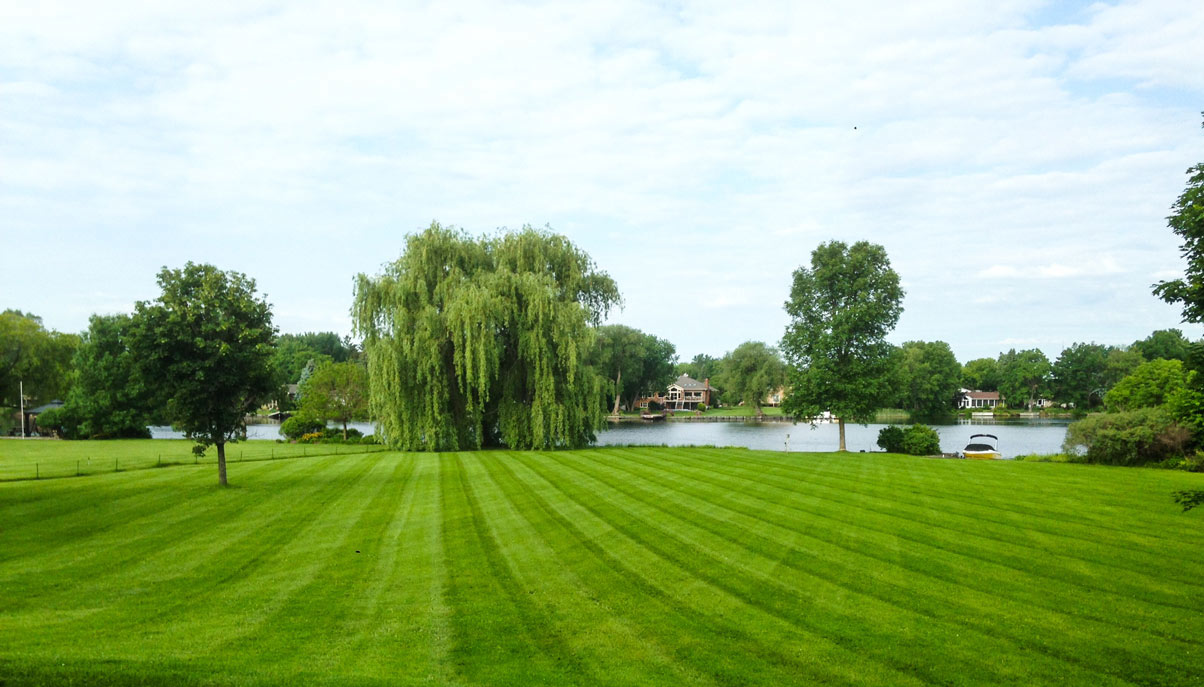 mowed lawn by the lake in ottawa