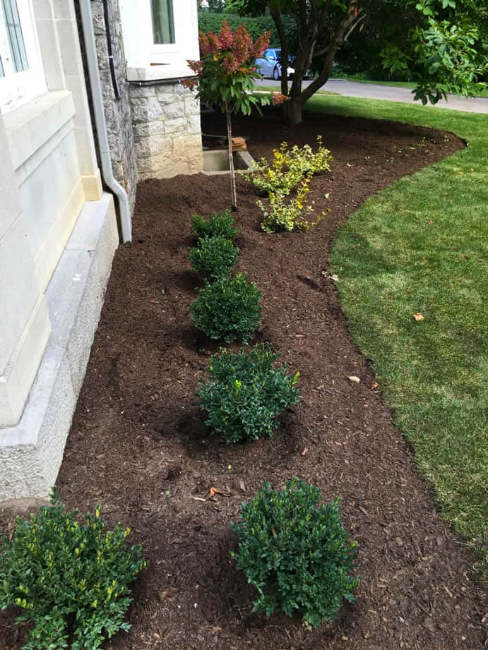 Residential Softscaping